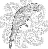 zentangle adulto animal dibujado mano de la página del colorante del lanzamiento de la tensión de Paisley del garabato del loro ilustración del vector