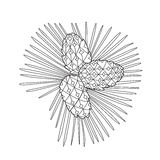 Zentangle the Baikal pinecones Royalty Free Stock Photography