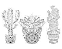 Zentangle Cactus set, vector illustration. Hand drawn outline de Royalty Free Stock Images