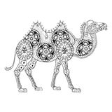 Zentangle Camel totem for adult anti stress Coloring Page. For art therapy, illustration in doodle style. Vector monochrome sketch with high details  on black Royalty Free Stock Images