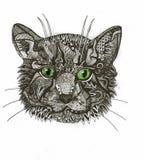 Zentangle cat Stock Image