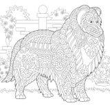 Zentangle Collie Szorstki pies royalty ilustracja