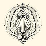 Zentangle del babbuino Immagini Stock Libere da Diritti