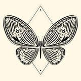 zentangle 3 della farfalla Fotografie Stock