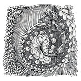 Zentangle Royalty Free Stock Image