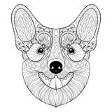 Zentangle Dog face in monochrome doodle style. Hand drawn puppy, vector Pembroke Welsh Corgi head illustration for adult. Antistress coloring pages, books, art royalty free illustration