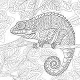 Zentangle estilizó el camaleón Fotografía de archivo
