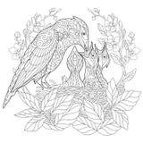 Zentangle estilizó el pájaro de jay libre illustration