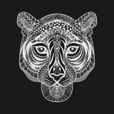 Zentangle estilizó la cara blanca del tigre Vector dibujado mano IL del garabato Fotografía de archivo libre de regalías