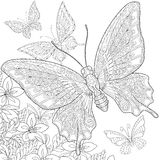 Zentangle estilizó mariposas Imagen de archivo