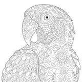 Zentangle estilizou a arara Imagens de Stock
