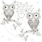 Zentangle estilizou as corujas monocromáticas que sentam-se nos ramos de árvore, lua dos amantes, estrelas, mão tirada, corações Foto de Stock