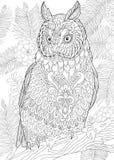 Zentangle estilizou a coruja de águia Fotos de Stock