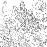 Zentangle estilizou o inseto da libélula ilustração royalty free