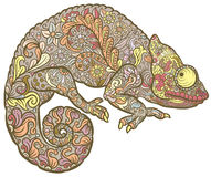 Zentangle estilizou o multi camaleão colorido Fotos de Stock Royalty Free