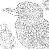 Zentangle estilizou o pássaro da pica-peixe Foto de Stock Royalty Free