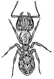 Zentangle ant vector file. Zentangle  file with authentic patterns file Stock Image