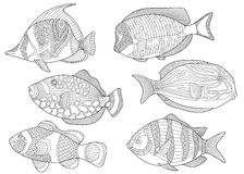 Zentangle fishes Royalty Free Stock Images