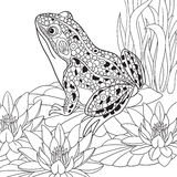 Zentangle gestileerde kikker royalty-vrije illustratie