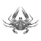 Zentangle gestileerde Koning Krab Hand Getrokken gegraveerde bohowijnoogst Stock Fotografie