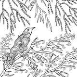 Zentangle gestileerde vogel in tuin Royalty-vrije Stock Fotografie