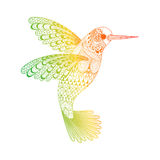 Zentangle ha stilizzato il colibrì Illustrazione disegnata a mano Fotografia Stock