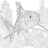 Zentangle ha stilizzato l'acquario Fotografia Stock