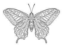 Zentangle ha stilizzato la farfalla fotografia stock libera da diritti