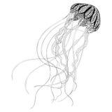 Zentangle ha stilizzato le meduse nere Disegnato a mano Fotografia Stock