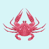 Zentangle ha stilizzato re rosso Krab La VE incisa annata disegnata a mano Immagine Stock
