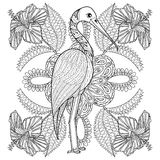 Zentangle Hand drawn Stork in Hibiskus for adult antistress colo. Ring pages, post card, t-shirt print, fabric. Exotic Bird illustration in doodle style, tattoo Stock Photography