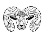 Zentangle head of mountain ram for coloring. Royalty Free Stock Photos