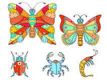 Zentangle insects illustration. Royalty Free Stock Image