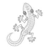 Zentangle Lizard totem for adult anti stress Coloring Page Royalty Free Stock Images