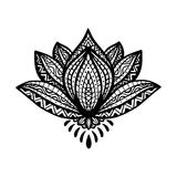 Zentangle lotus flower in ornamental ethnic style. Hand drawn elegant fashion lotus, detailed stylized black flower  on wh Royalty Free Stock Image