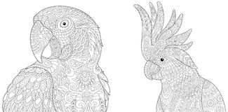 Zentangle macaw ara and cockatoo. Stylized macaw ara and cockatoo parrots, isolated on white background. Set collection for adult anti stress coloring book page royalty free illustration