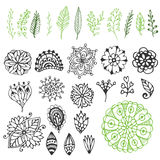 Zentangle nature collection. Hand drawn vector illustration with creative doodle flowers & branches Stock Image