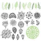 Zentangle natursamling Handen drog vektorillustrationen med idérikt klotter blommar & förgrena sig