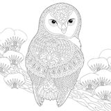 Zentangle owl coloring page. Coloring page. Coloring book. Anti stress colouring picture with owl. Freehand sketch drawing with doodle and zentangle elements stock illustration