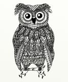 Zentangle owl Royalty Free Stock Image