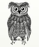 Zentangle owl Royalty Free Stock Image