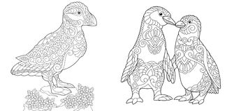 Zentangle puffin and emperor penguins. Coloring Page. Adult Coloring Book. Puffin, seabird of North Pacific and Atlantic Oceans. Emperor Penguins couple in love Stock Images
