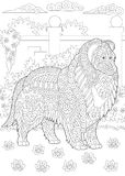 Zentangle Rough Collie dog Royalty Free Stock Photography