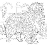 Zentangle Rough Collie dog Royalty Free Stock Images