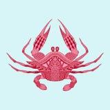 Zentangle stileerde rode Koning Krab Hand Getrokken wijnoogst gegraveerde ve Stock Afbeelding