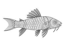 Zentangle stiliserade av den bepansrade havskatten för färgläggningboken för vuxna människan, T-tröjadiagram, tatuerar och så vid royaltyfri illustrationer