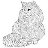 Zentangle stiliserade den maine tvättbjörnkatten Arkivbilder