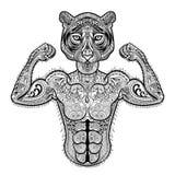 Zentangle stiliserade den starka tigern Hand dragen sportvektorillustr Arkivfoto