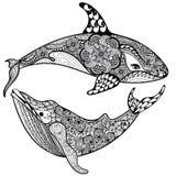 Zentangle stiliserade det havshajen och valet Hand dragen vektorillust Royaltyfri Fotografi