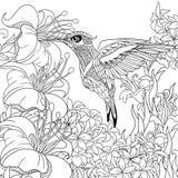 Zentangle stiliserade kolibrin Fotografering för Bildbyråer